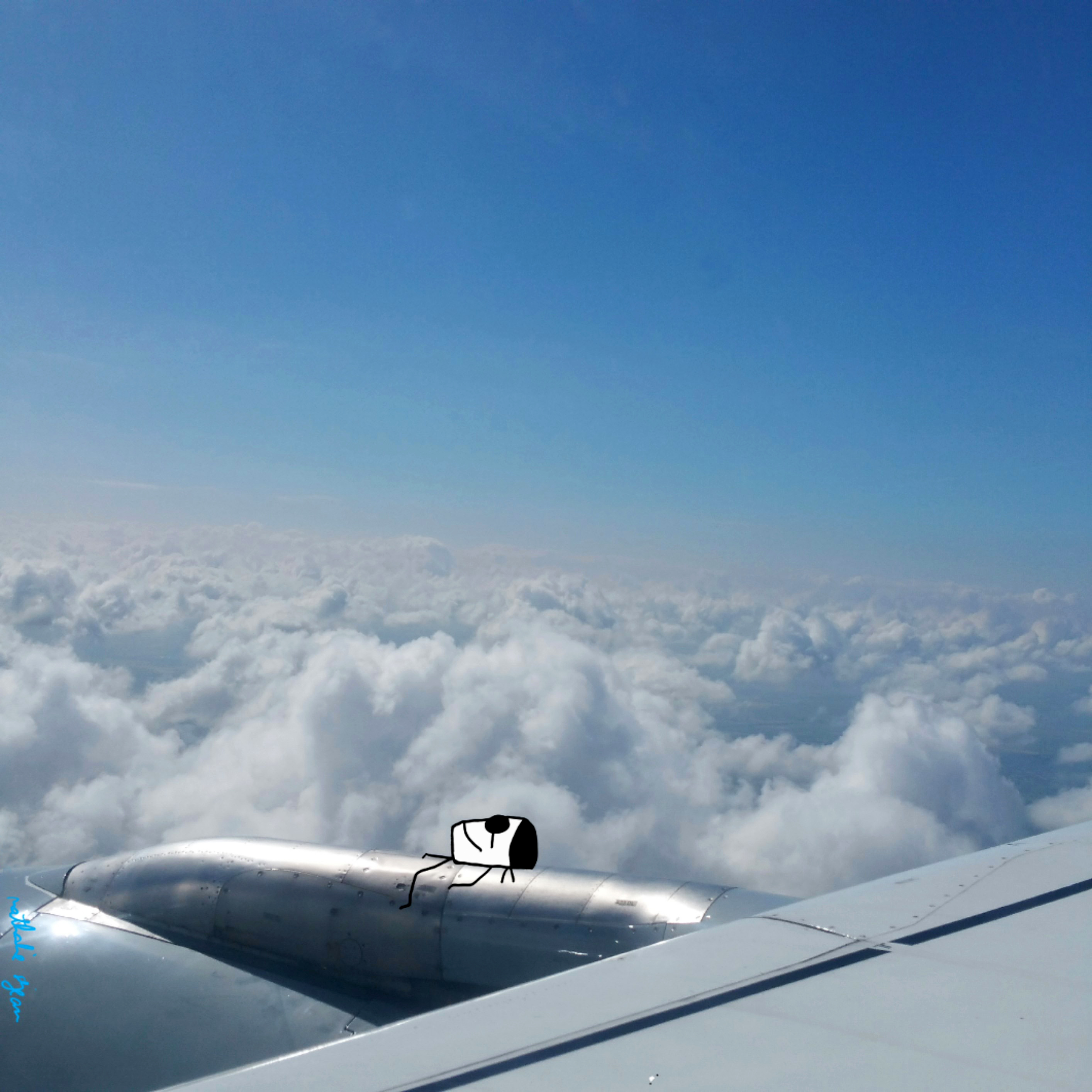 Tanning on a plane by Nathalie Sejean